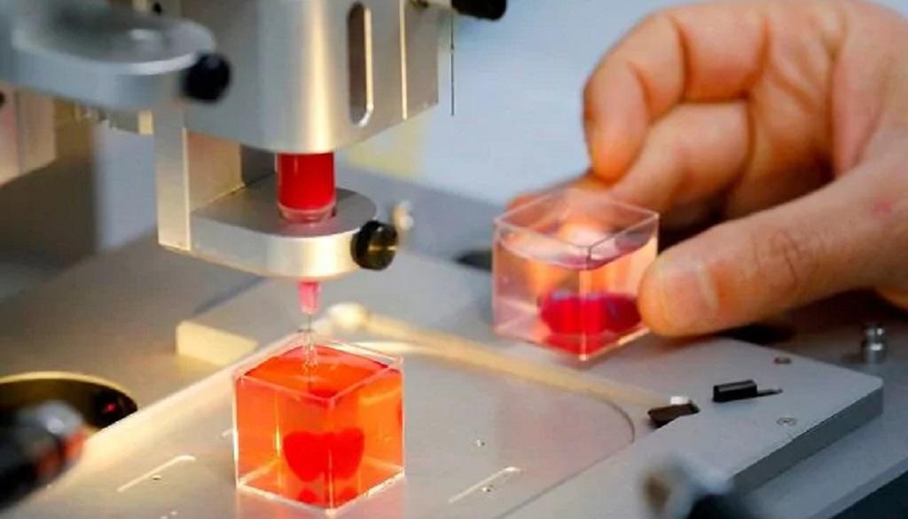 Stampato il primo mini-cuore umano in 3D